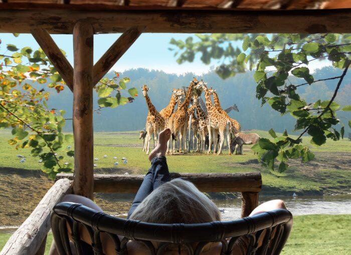 Safari Resort Beekse Bergen - Hilvarenbeek - BungalowSpecials